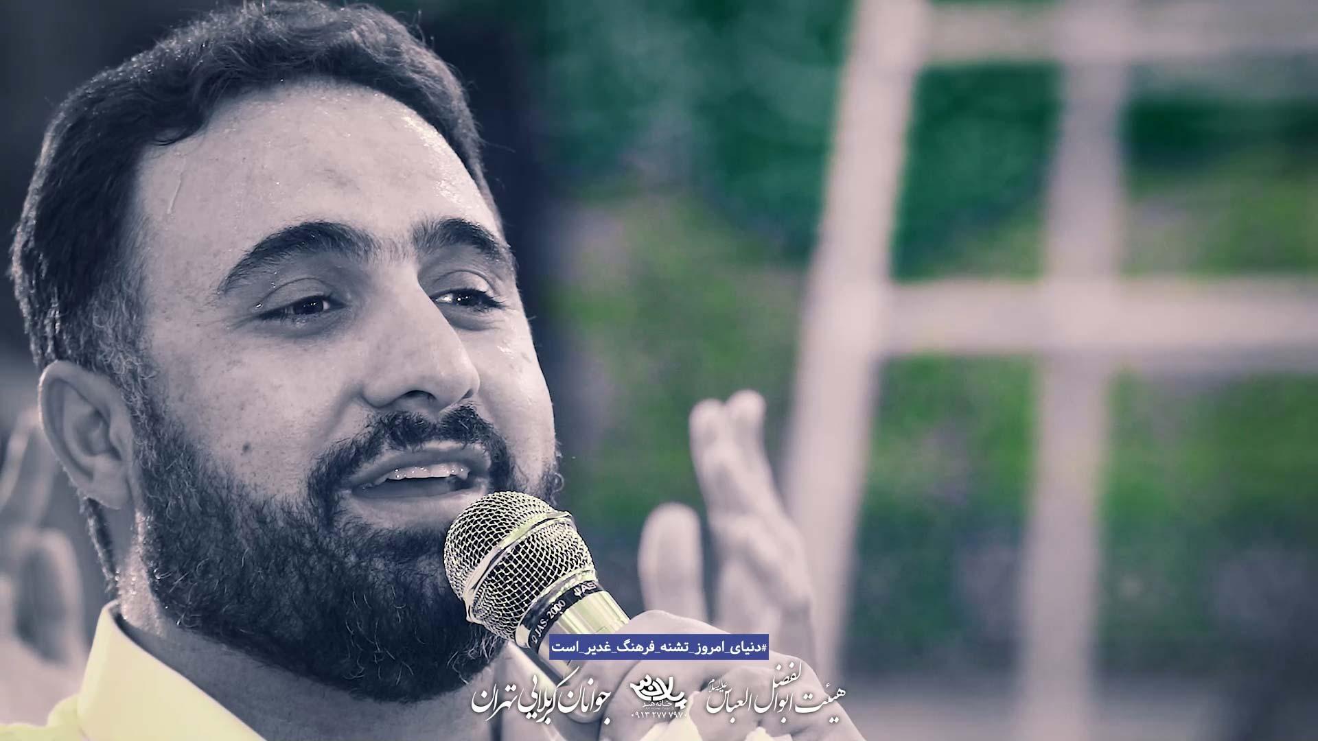 تو زیبایی محمد فصولی
