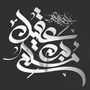 مسلم بن عقیل علیه السلام